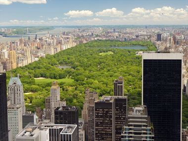 A beginner's guide to Central Park