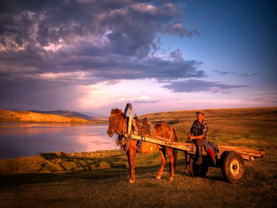 Mongolian farmer with horse and cart