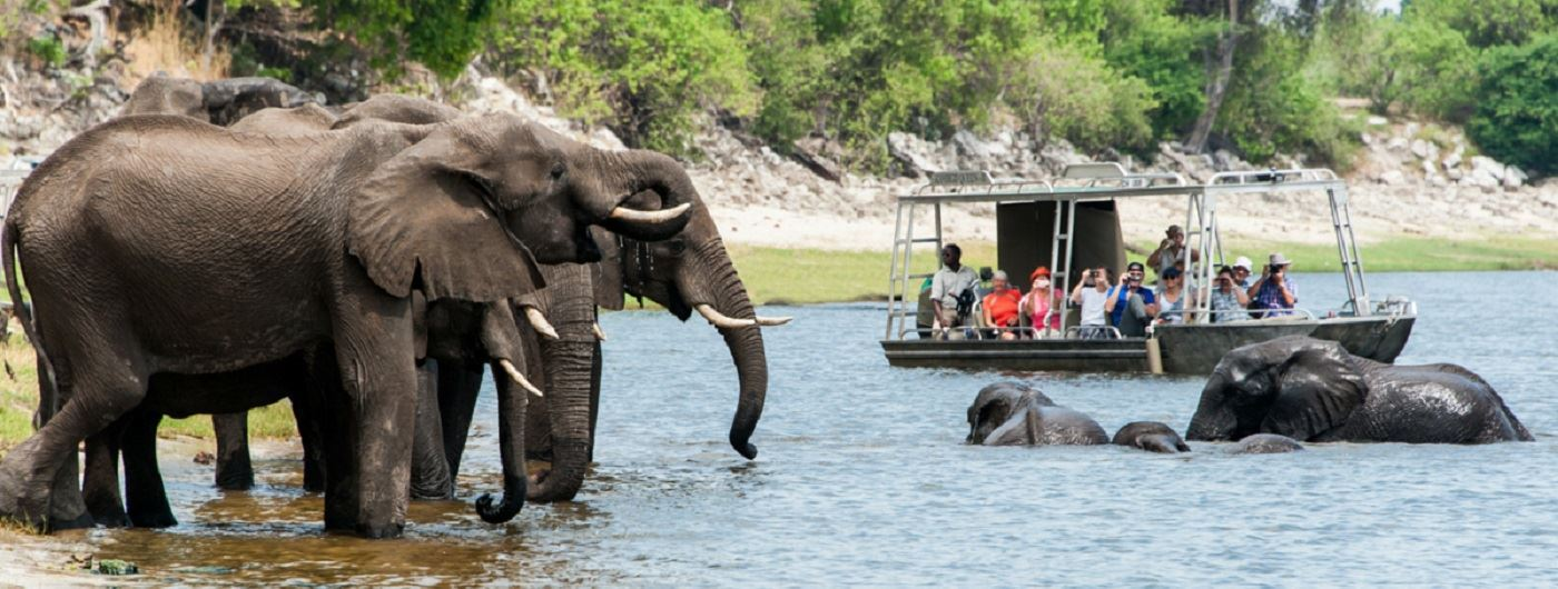 Zambezi Queen river safaris