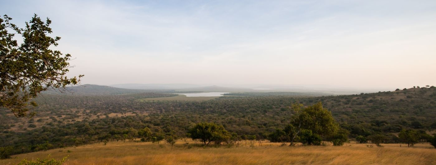 Lake Mburo - Getty