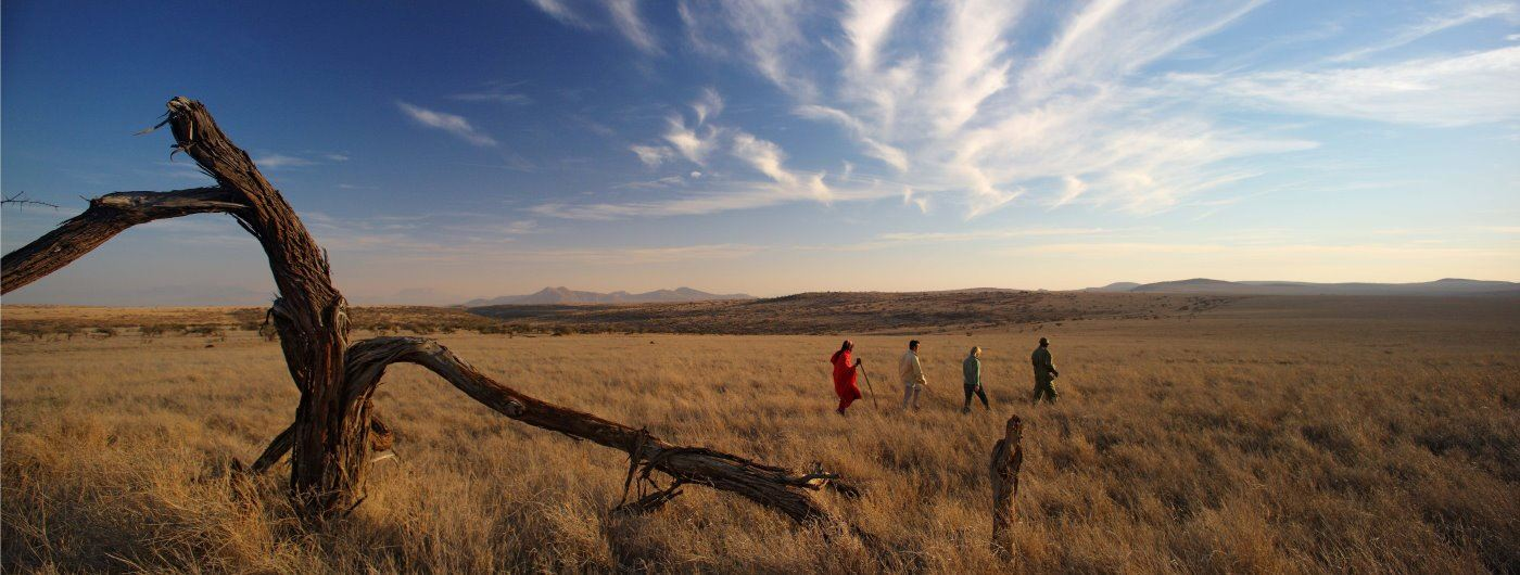 Lewa Safari Camp image of Laikipia