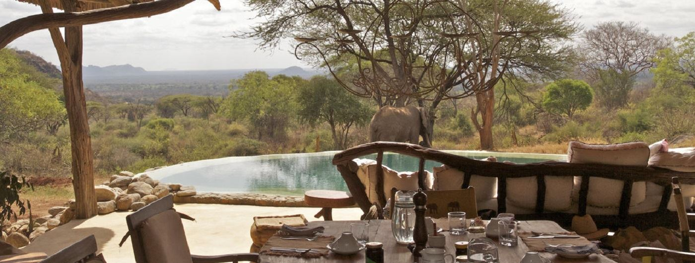 Sarara Camp elephant by the pool