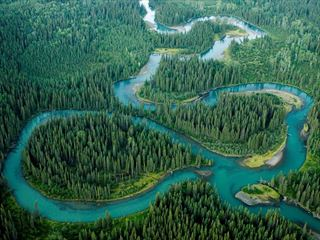 Aerial view of the Iskut River winding through forest