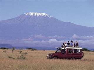 Take game drives in some of the most renowned locations