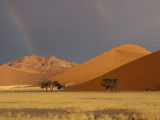 Red dunes in the desert