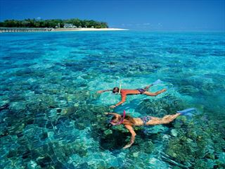 Snorkellers at Green Island