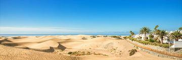 Maspalomas sand dunes, Gran Canaria