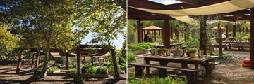 Gardens of Avila Restaurant, Sycamore Mineral Springs Resort and Spa