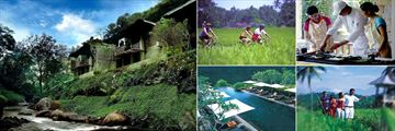 Activities at Maya Ubud Resort & Spa, Including Cycling, Cooking Classes, Swimming in the Pool and Trekking