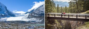Athabasca Glacier & Maligne Canyon Passover in Jasper