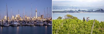 Auckland Harbour & Waiheke Island Vineyard