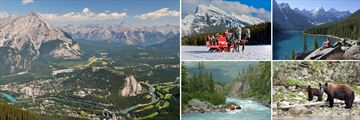 Scenery, Experiences & Wildlife in Banff
