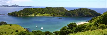 Bay of Islands in the summer