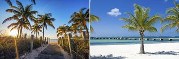 Tropical scenery in Key West, Florida
