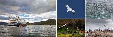 Birdlife Sighting Opportunities