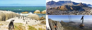 Boulders Beach, Table Mountain & Cape Town landscapes