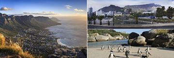 Cape Town vistas & Penguins on Boulders Beach