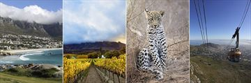 Cape Town, Winelands, Leopard & Table Mountain cable car