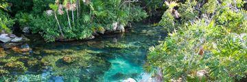Cenote Xel Ha