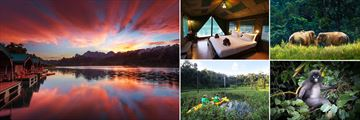 Elephant Hills National Park, Rainforest Camp Cheow Larn Lake at sunset, Luxury Floating Temp, Elepants raoming, Dusky Langu in the trees, Canoeing ,