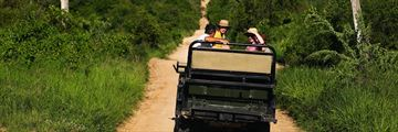 Enjoying game drives in South Africa
