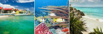 Georgetown, Diving in Cozomel & the Riviera Maya coast