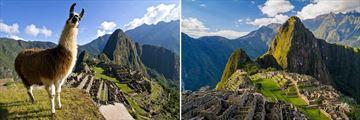 Amazing Machu Picchu scenery
