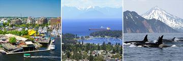 Granville Island, Nanaimo Harbour & Orca Spotting
