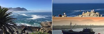 Hermanus landscapes & whale watching