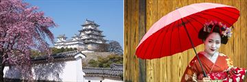 Himeji Castle & Geisha