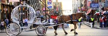 Horse & Carriage on Beale Street, Memphis