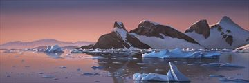 Antarctic icebergs at sunset