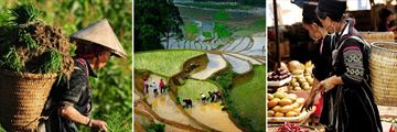 Immerse in the local lifestyle, Sapa