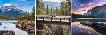 Jasper & Maligne Lake