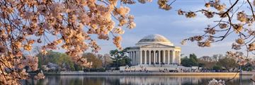 The Jefferson Memorial in Washington D.C