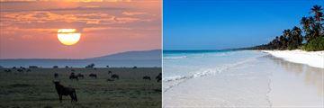 Kenyan sunset & Zanzibar beach