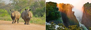 Kruger National Park rhinos & The Victoria Falls
