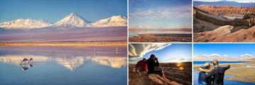 Laguna Chaxa, Flamingo National Park & San Pedro de Atacama