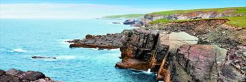 Mistaken Point Ecological Reserve, Newfoundland & Labrador, Avalon Barrett Mackay