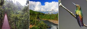 Monteverde scenery