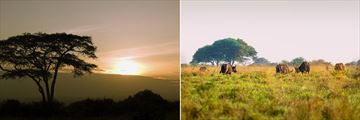 Nairobi Tented Camp landscapes