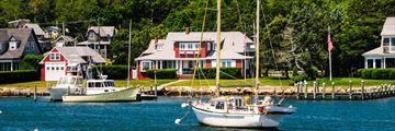 Oak Buff Island of Martha's Vineyard, Massachusetts