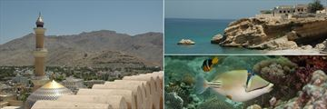 Oman architecture, beachfront and marine life