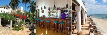 Bar and Cafe at Peponi Hotel