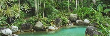 Natural pools in Daintree Rainforest