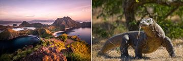 Padar Island and komodo dragons