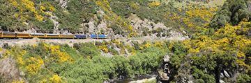 Travelling through Taieri Gorge