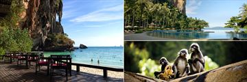 Rayavadee Private Villas, Beach Deck, Pool Deck and Spectacled Langurs