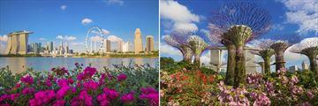 Singapore skyline & gardens