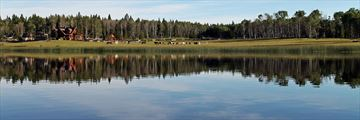 Siwash Lake Wilderness Resort, Resort and Lake